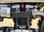 Triumph T100 engine gal