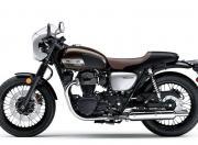 Kawasaki W800 Image 11