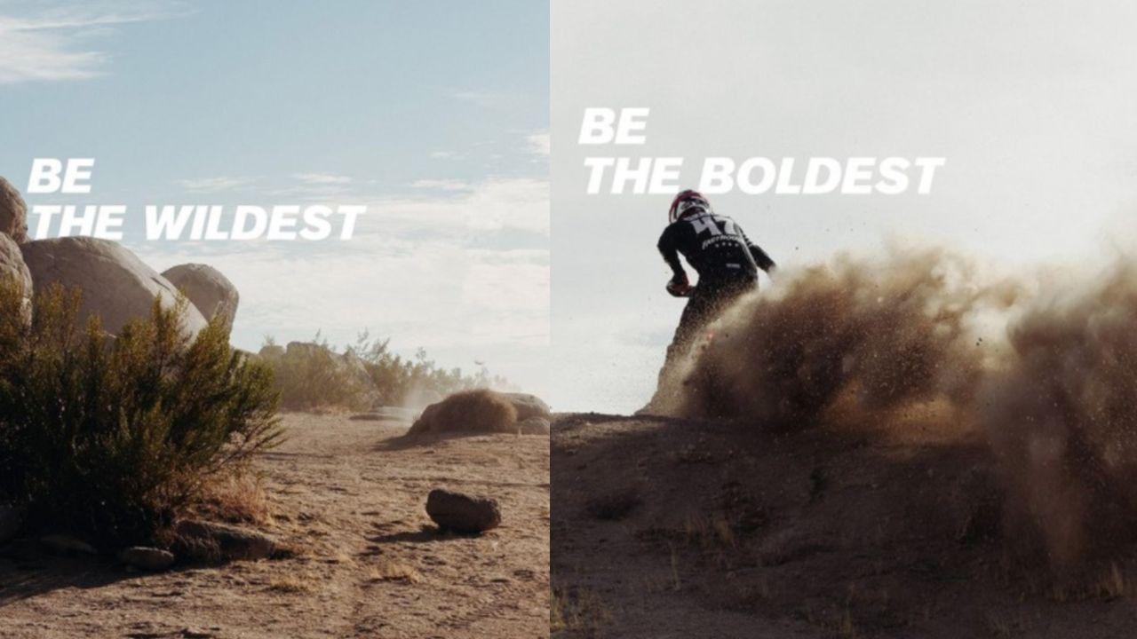Ducati Scrambler 1100 Desert Sled Teaser