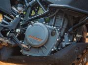 KTM 250 Adventure Engine Side View