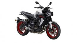 Yamaha MT-09 2019 Ground Clearance.
