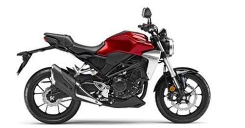 Honda CB300R Model Image