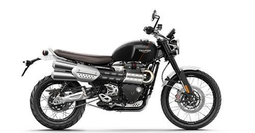 Triumph Scrambler 1200 Colours - View Triumph Scrambler 1200 colours available in Indian market at autoX