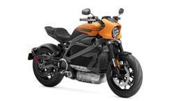 Harley-Davidson LiveWire Model Image