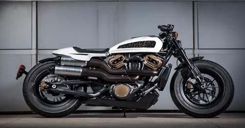 Harley-Davidson Custom 1250 Model Image